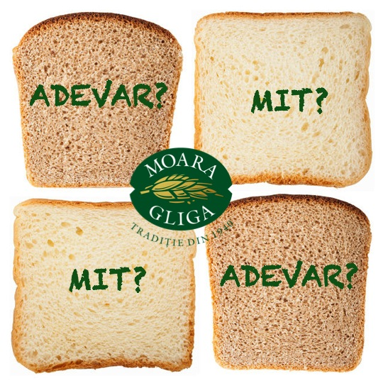 adevaruri si mituri despre paine